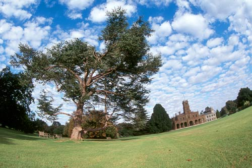 werribee_park_mansion24