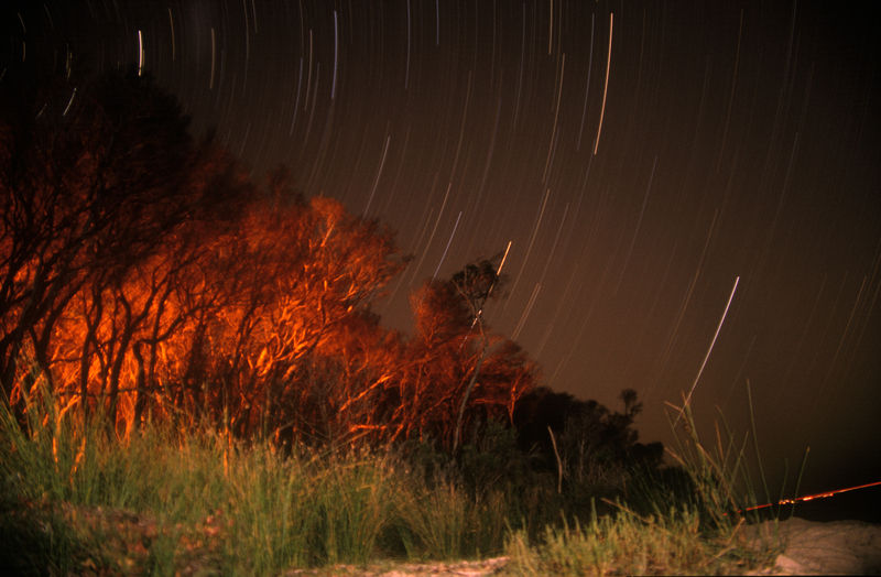 Campfire and Stars at Cooinda