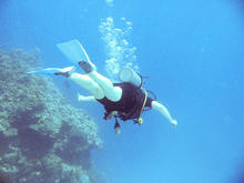 great_barrier_reef-20090606-6.jpg