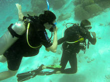great_barrier_reef-20090606-11.jpg