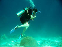 great_barrier_reef-20090606-12.jpg