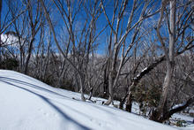skiing_NSW_052.jpg