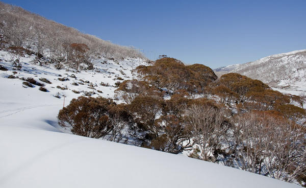 skiing_NSW_104.jpg