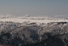 Bogong_High_Plains-0050.jpg