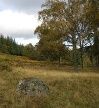 autumn_deeside_072