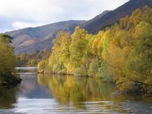 Autumn in Glen Affric  October 23-24, 2004