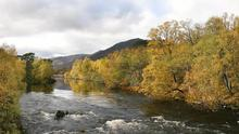 glen_affric_bridge_pan4b