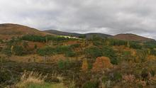 glen_affric_view_pan2
