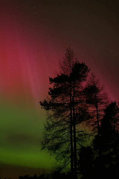 colourful_aurora_nov2003_09